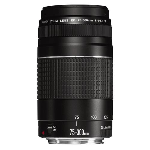 A picture of Canon EF 75-300mm f/4-5.6 III Lens
