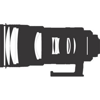 A picture of Nikon AF-S 300mm f/2.8G ED VR II Lens
